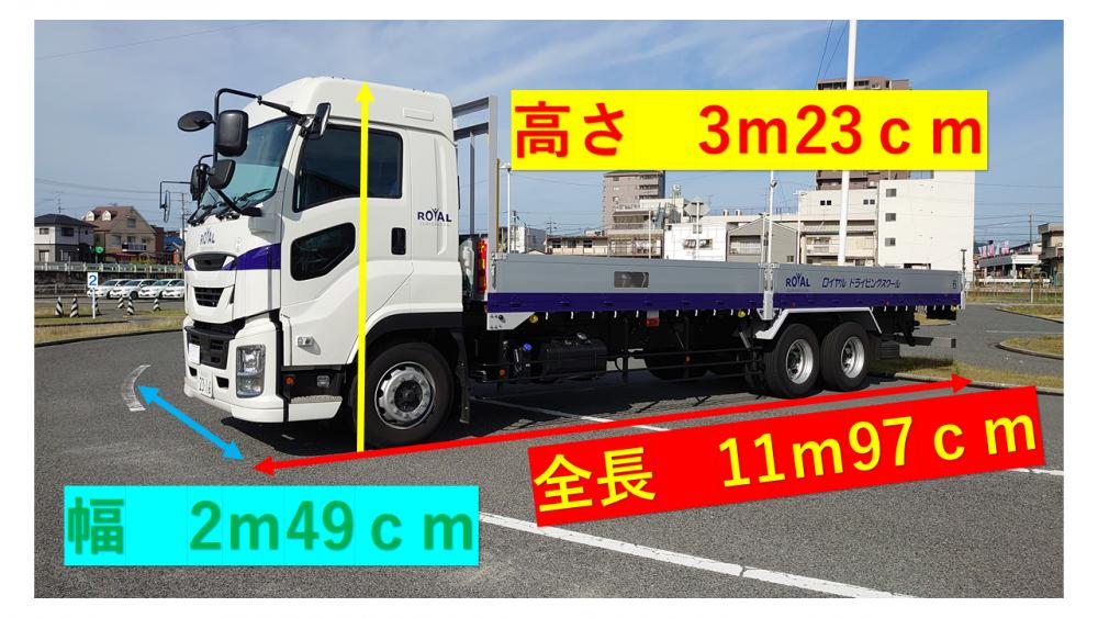 教習で使用する大型自動車のサイズ