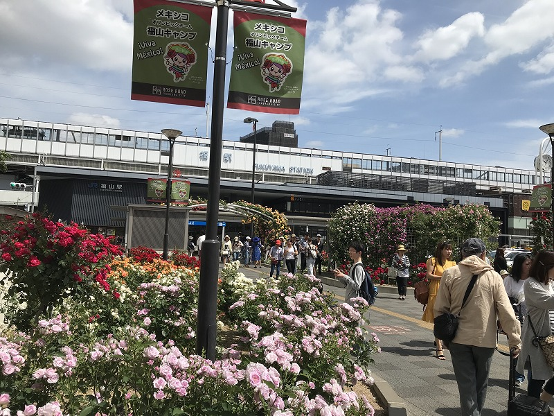 VRドライブシミュレータ- VR 福山ばら祭り ロイヤルドライビングスクール ばら祭り