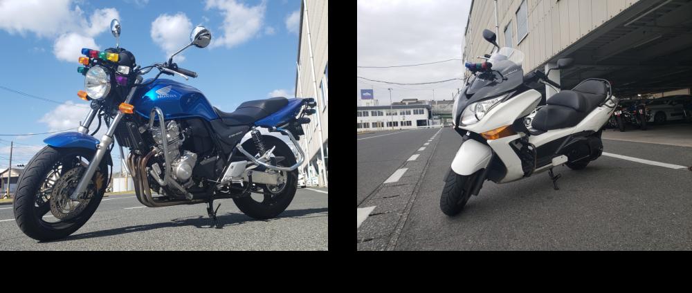 バイク免許 車種