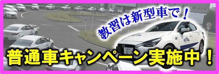 広島 自動車学校 普通自動車免許 ロイヤル キャンペーン